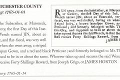 1765 Runaway Notice James Horton pursues Jin